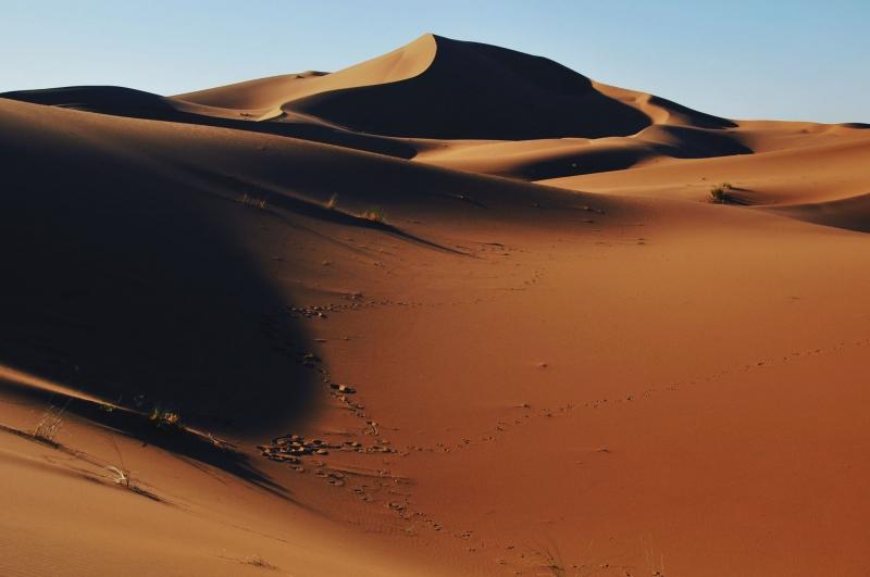 Logo Mélodie du désert, M'Hamid El Ghizlane (Maroc)